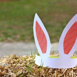 orelles de conill