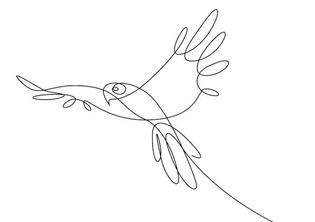 art per adults - dibuix amb una línia