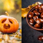 Halloween o castanyada