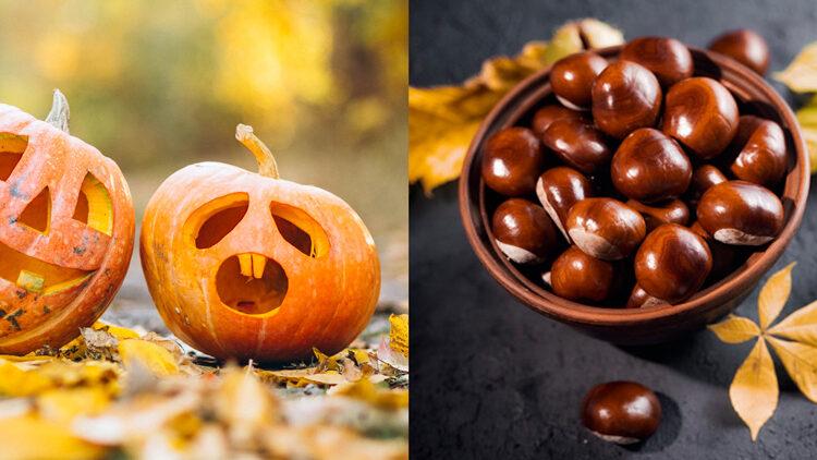 Halloween o Castanyada?